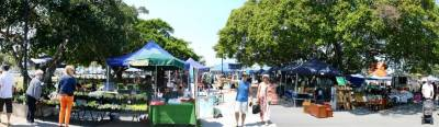 MANLY CREATIVE MARKET
