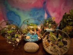 Magical Live Terrariums and Crafts by Becca